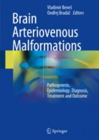 Brain Arteriovenous Malformations. Pathogenesis, Epidemiology, Diagnosis, Treatment and Outcome (hardcover)