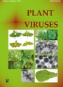Plant Viruses. Volume 2 Number 1 2008